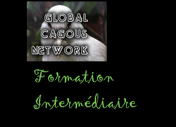 Formation Intermédiaire